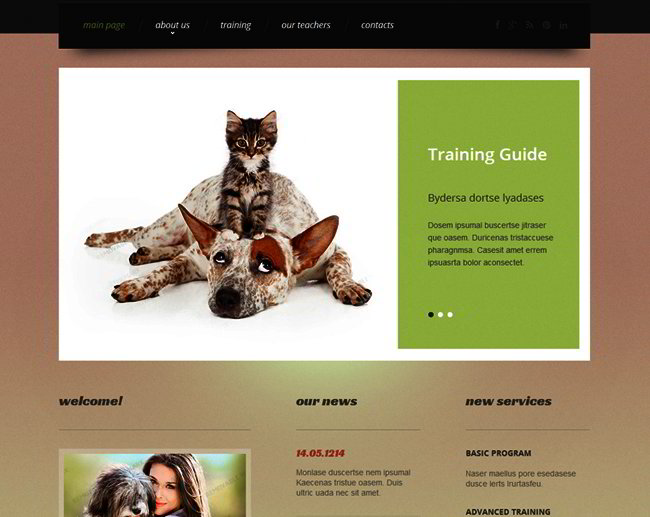 pet_web_template