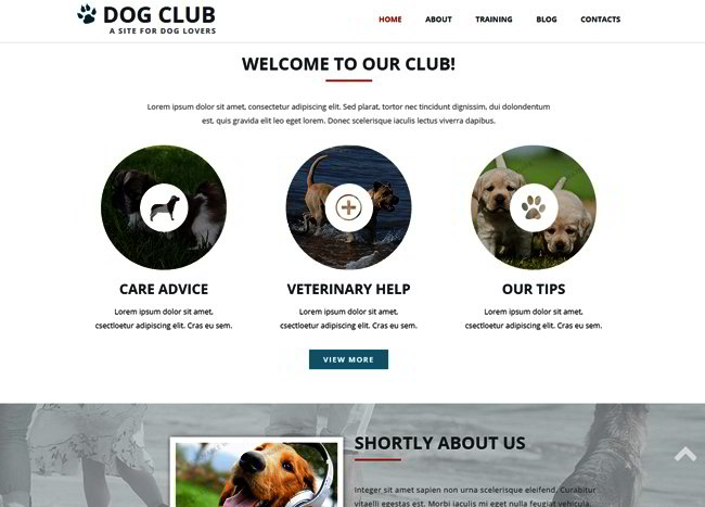 Dog Club Responsive Web Template