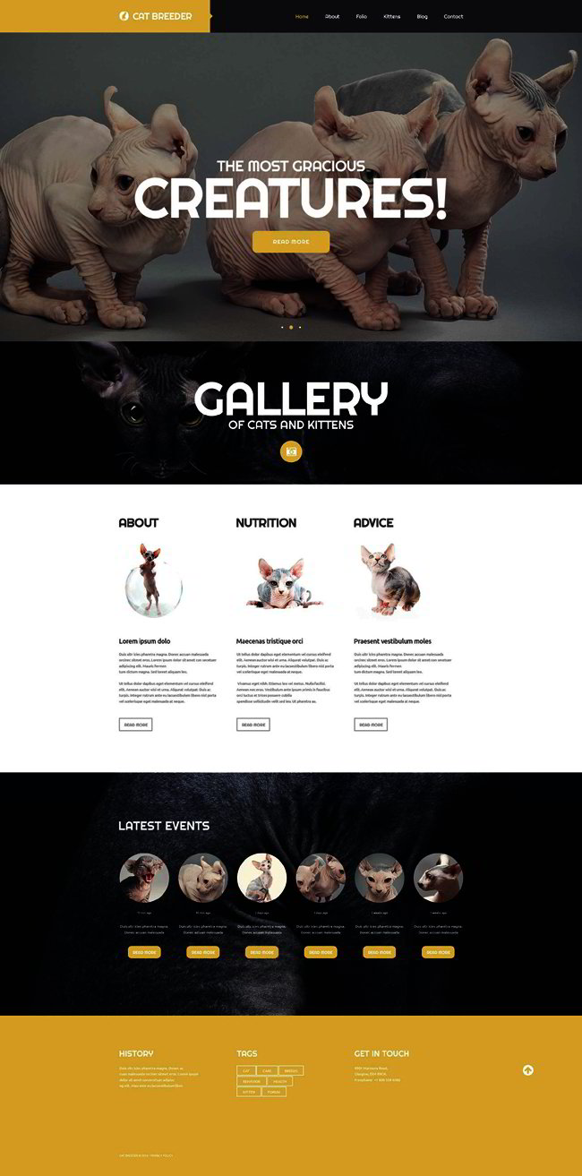 Cat Breeders Website Template